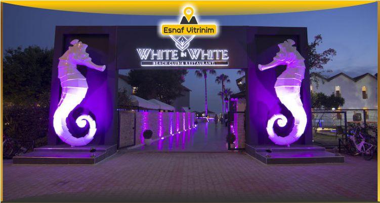 images/uploads/firmalar/white-in-white-beach-club-alanya.jpg